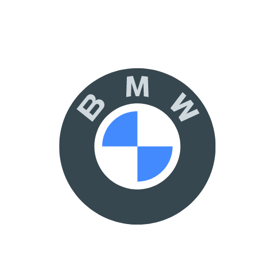 bmw renting coche